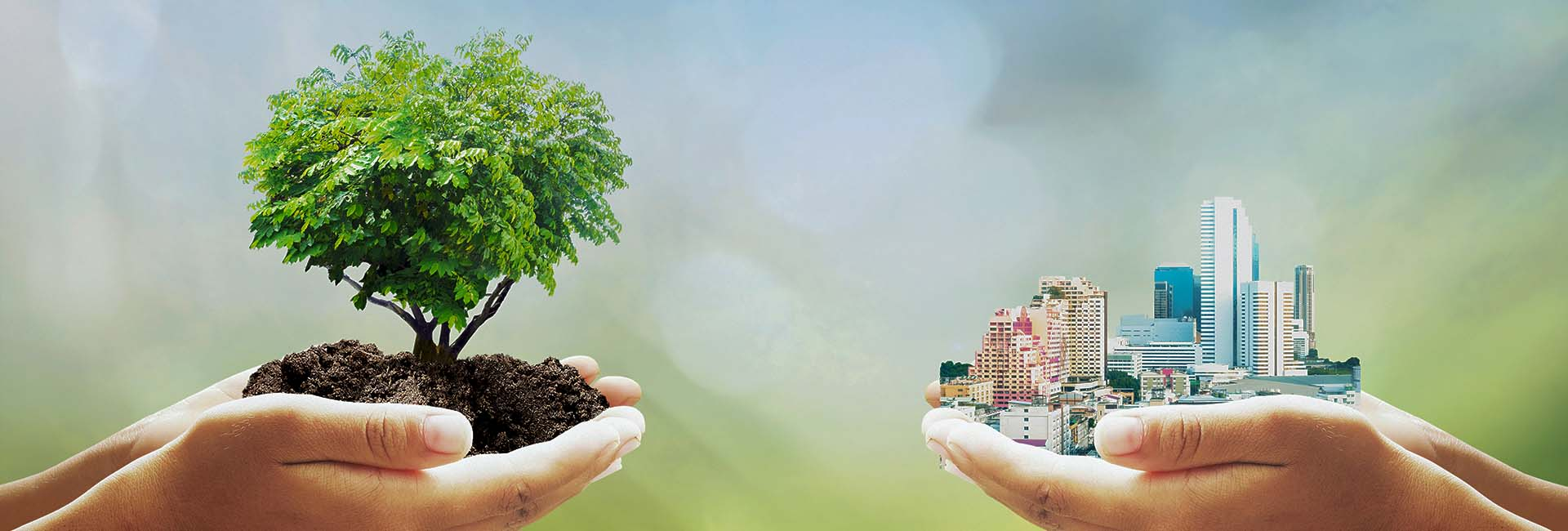 Project management tool for green building certification